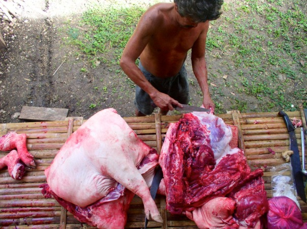 Bebe cutting up the pig into smaller pieces – it is cut in pieces suitable for cooking into popular fiesta dishes such as humba and menudo.