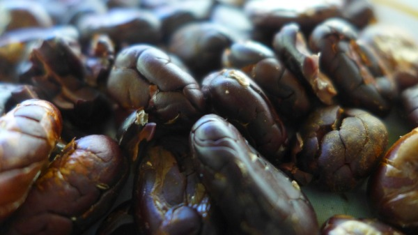 Cacao beans after roasting and shelling.